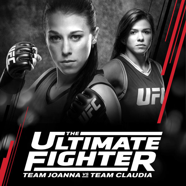 Ultimate Fighter - Season 25