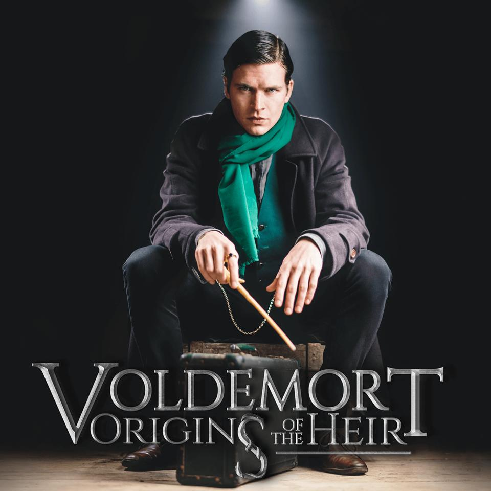 Voldemort Origins of the Heir