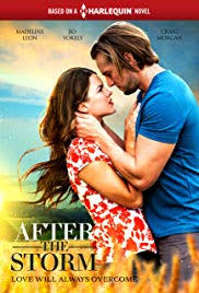 After the Storm (2019)