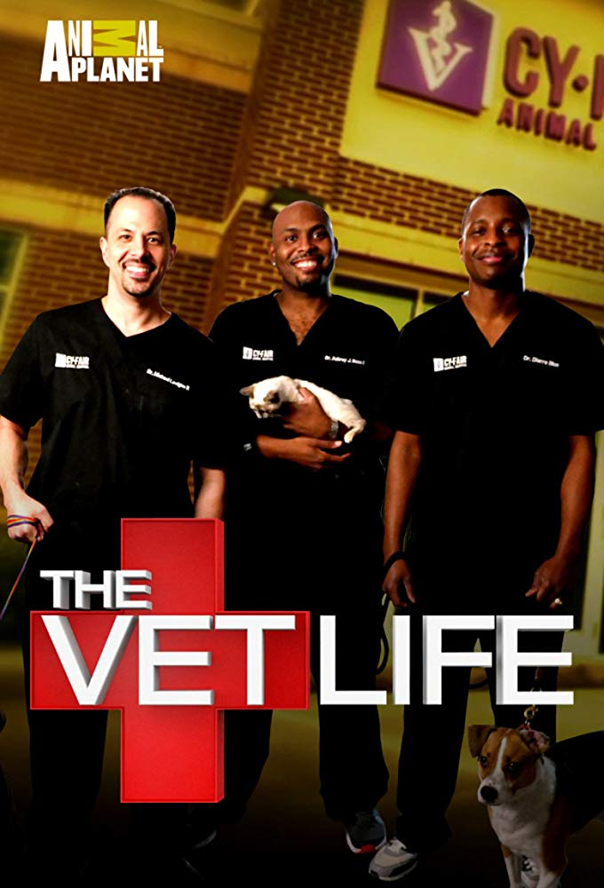 The Vet Life - Season 4